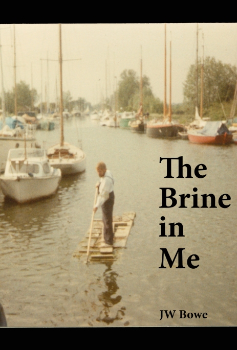 the brine in me cover
